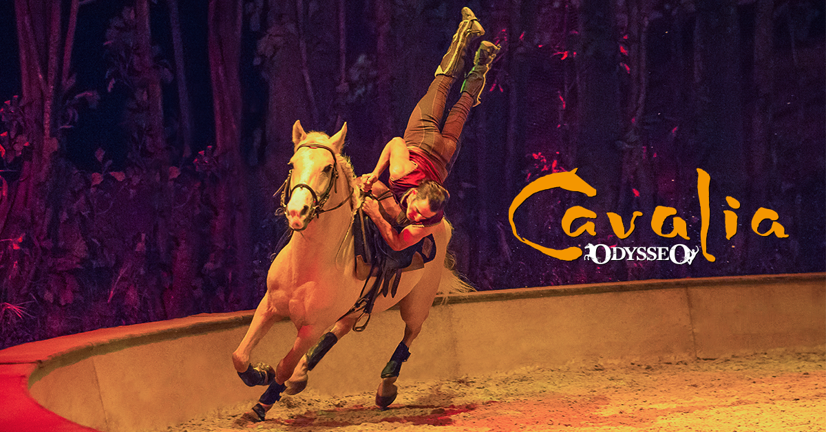 The preparation is well underway for the Nashville debut of Odysseo by Cavalia!