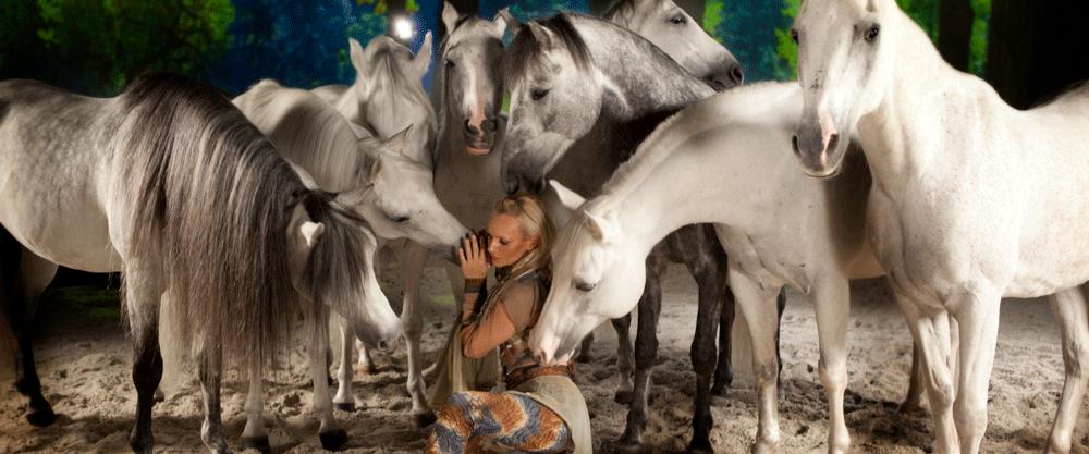 Cavalia_Odysseo_Arabians